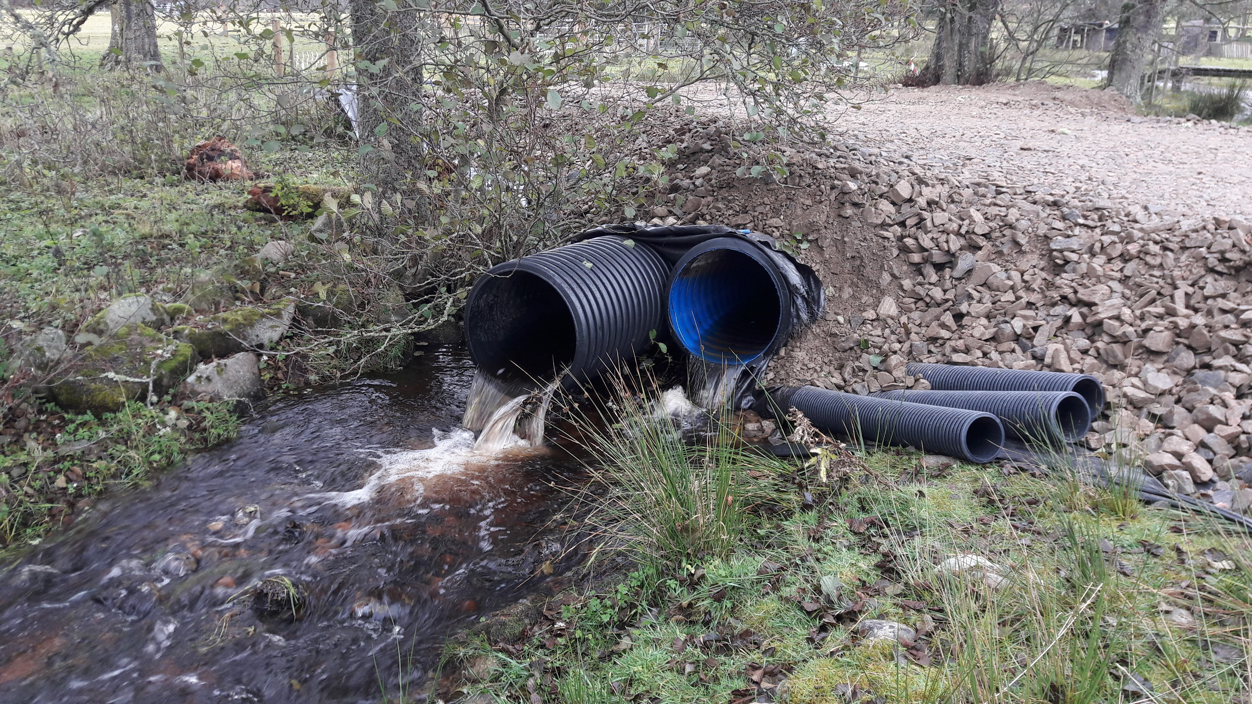 Findhorn, Nairn and Lossie Fisheries Trust